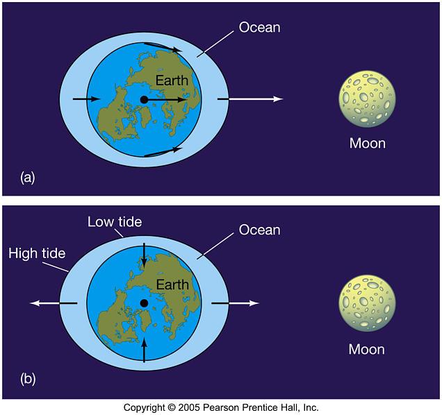 แรงไทดัล คือแรงที่ใช้อธิบายน้ำขึ้นน้ำลงบนโลก ซึ่งเป็นผลจากแรงโน้มถ่วงลัพธ์ที่บนผิวดาวไม่เท่ากัน  ...